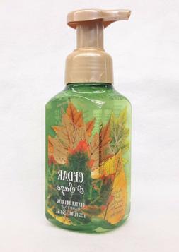 1 Bath & Body Works CEDAR & SAGE Gentle Foaming Hand Soap
