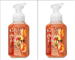 2-Pack Bath And Body Works Gentle Foaming Hand Soap Peach Be