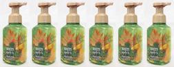 6 Bath & Body Works CEDAR & SAGE Gentle Foaming Hand Soap