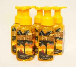 Bath & Body Works Anti-bacterial Gentle Foaming Hand Soap Ri