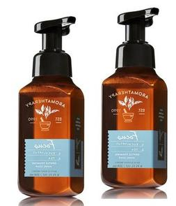 Bath and Body Works 2 Pack Aromatherapy Focus Gentle Foaming