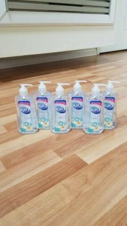 Dial Complete Anti-Bac Liquid Hand Soap 11oz each White Tea